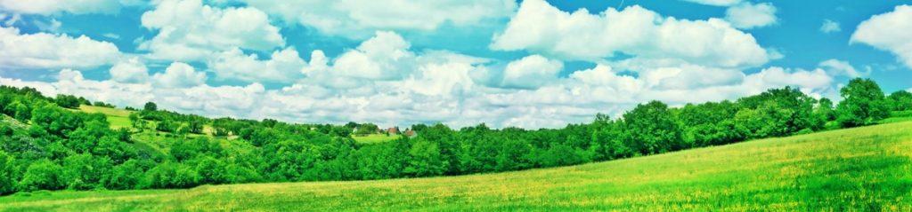Grüne Landschaften